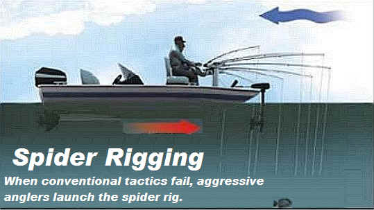 Ed phillips bee ready holders spider rigging for Spider rigs for crappie fishing